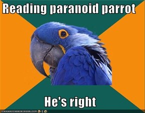Paranoid Parrot: I'm A Guy Like Me