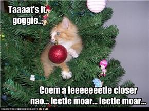 Taaaat's it, goggie...