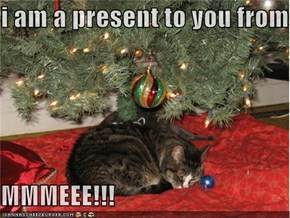 i am a present to you from  MMMEEE!!!