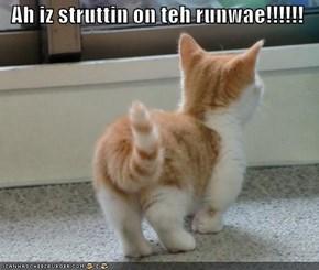Ah iz struttin on teh runwae!!!!!!