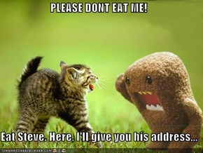PLEASE DONT EAT ME!  Eat Steve. Here, I'll give you his address...