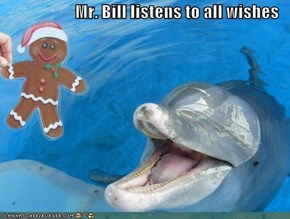 Mr. Bill listens to all wishes
