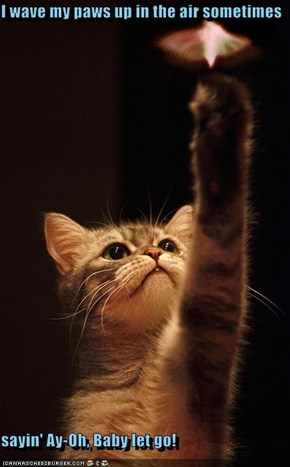 I wave my paws up in the air sometimes  sayin' Ay-Oh, Baby let go!