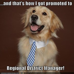 ...and that's how I got promoted to   Regional District Manager!