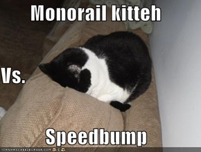 Monorail kitteh Vs. Speedbump