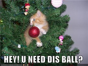 HEY! U NEED DIS BALL?