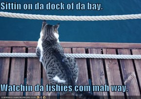 Sittin on da dock of da bay.  Watchin da fishies com mah way.
