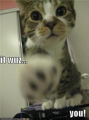 it wuz... you!