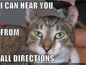 I CAN HEAR YOU FROM ALL DIRECTIONS