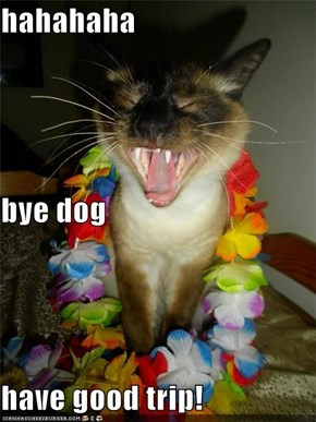 hahahaha  bye dog have good trip!