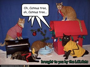 A Charlie Brown Catmus