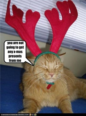 x-mas kitty :)