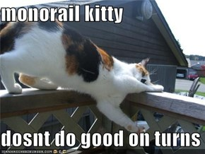 monorail kitty  dosnt do good on turns