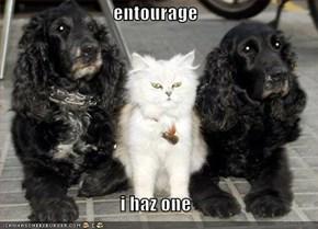 entourage  i haz one