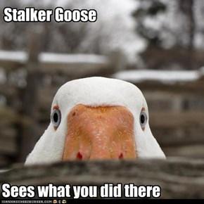 Stalker Goose
