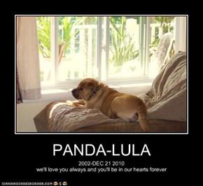 PANDA-LULA