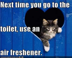 Next time you go to the  toilet, use an  air freshener.