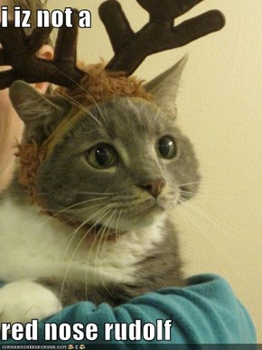 i iz not a  red nose rudolf