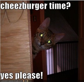 cheezburger time?  yes please!