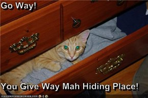 Go Way!  You Give Way Mah Hiding Place!