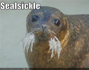 Sealsickle