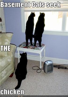Basement Cats seek THE chicken