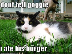 dont tell goggie  i ate his burger