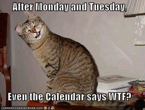 After Monday and Tuesday,     Even the Calendar says WTF?