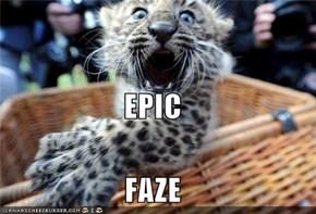EPIC FAZE