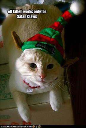 elf kitteh...