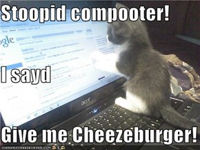 Stoopid compooter! I sayd Give me Cheezeburger!