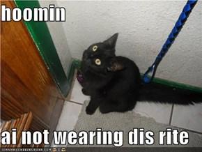 hoomin  ai not wearing dis rite