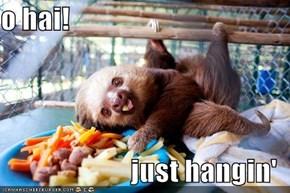 o hai!  just hangin'