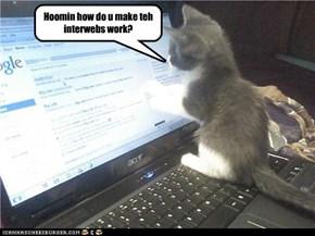 Kitty needs help.