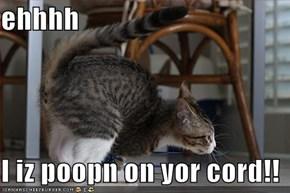 ehhhh  I iz poopn on yor cord!!