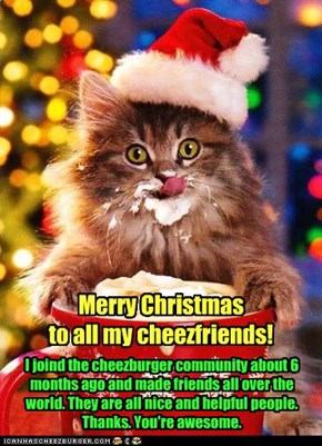 Merry Christmas an Merry Catmas!