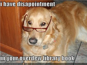 i have disapointment  in your overdew library book