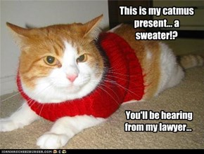 This is my catmus present... a sweater!?