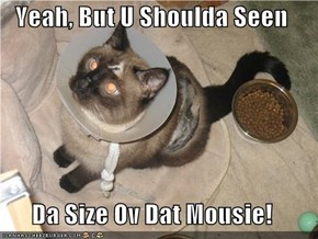 Yeah, But U Shoulda Seen  Da Size Ov Dat Mousie!
