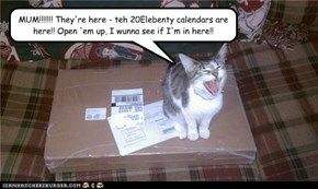 MUM!!!!!!! They're here - teh 20Elebenty calendars are here!! Open 'em up, I wunna see if I'm in here!!