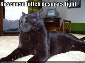 Basement hitteh despises light