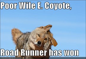 Poor Wile E. Coyote,  Road Runner has won