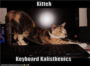 Kitteh  Keyboard Kalisthenics