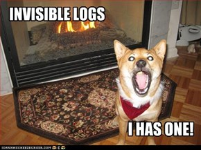 INVISIBLE LOGS