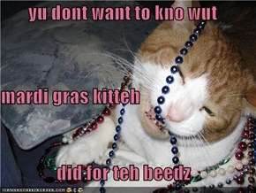 yu dont want to kno wut mardi gras kitteh did for teh beedz