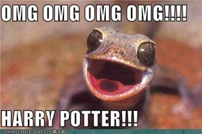 OMG OMG OMG OMG!!!!   HARRY POTTER!!!