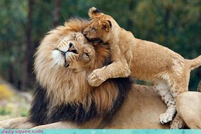 Acting Like Animals: Loves You Dada!