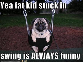 Yea fat kid stuck in   swing is ALWAYS funny