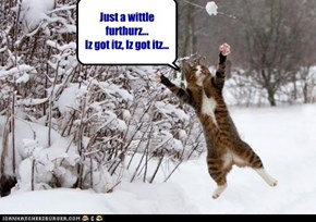 Just a wittle furthurz... Iz got itz, Iz got itz...