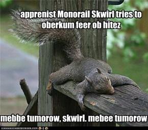 apprenist Monorail Skwirl tries to oberkum feer ob hitez
